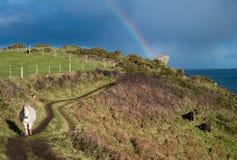 Pony und Regenbogen Lizenzfreies Stockbild