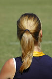 Ponytail Immagine Stock