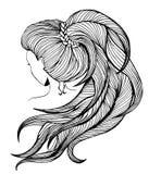 Длинный ponytail - линия искусство Стоковое Фото