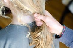 ponytail Photo libre de droits