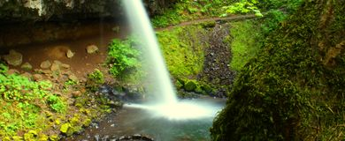 Ponytail Falls Stock Photos