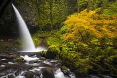 Ponytail falls, autumn, Columbia Gorge, Oregon Stock Photo