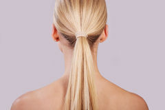Ponytail Royalty Free Stock Photo