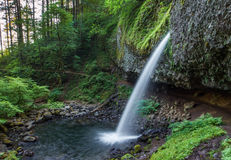 PonytailFalls Royalty Free Stock Images