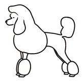 Poodle cartoon. Stock Photography