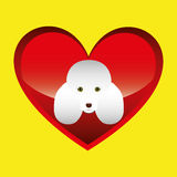 Poodle dog face design icon Royalty Free Stock Photos