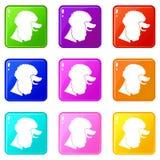 Poodle dog icons 9 set Royalty Free Stock Photos