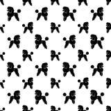 Poodle dog seamless background. Stock Image