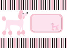 Poodle Dog Stripes card background Stock Photo