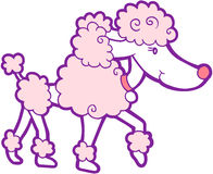 Poodle Dog Vector. Cute Poodle Dog Vector Illustration Royalty Free Stock Photos