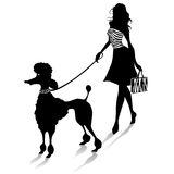 Poodle and female Royalty Free Stock Photography