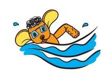 Poodle Pet Dog Learning Swimming Illustration Royalty Free Stock Photography