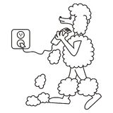 Poodle and shaver Royalty Free Stock Images