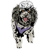 Poodle Sketch Royalty Free Stock Images