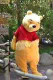 Pooh from Disneyland California. Winnie the Pooh from the Disneyland California Royalty Free Stock Photos