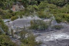 Pook da lama do geyser de Whakarewarewa no parque térmico de Te Puia em Nova Zelândia Fotos de Stock