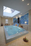 Pool. In a magnificent country house royalty free stock photo