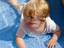 In the pool Stock Photography