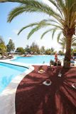 Pool area with a palm. Sunny pool area with a palm stock photography