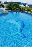 Pool auf der Küste. Lizenzfreies Stockfoto