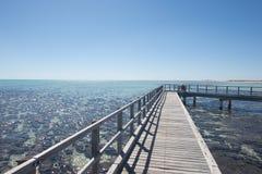 Pool Australien Frau Stromatolites Hamelin Stockfotografie