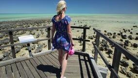 Pool Australien Stromatolites Hamelin stock footage