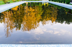 Pool during autumn time. Close up Royalty Free Stock Images