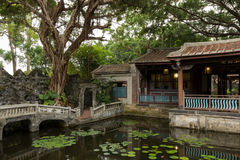 Pool, banyan tree and traditional Chinese building Royalty Free Stock Images