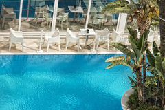 Pool bar coconut palm tree Royalty Free Stock Photos