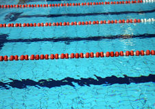 Pool with blue water and the swimming lanes Royalty Free Stock Image