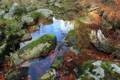 Pool in Bohemian Forest. A pool at the river Vydra in Bohemian Forest, Czech Republic stock photos