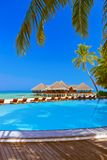 Pool and cafe on Maldives beach stock image