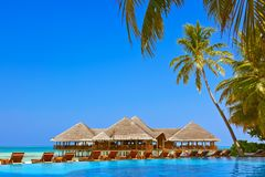 Pool and cafe on Maldives beach stock images