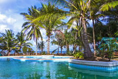 Pool and coconut on seaside Stock Images