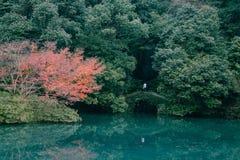 Pool in de herfst Stock Foto