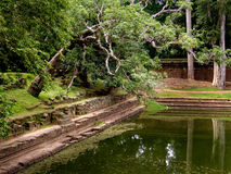 Pool durch alten Tempel Stockfotografie