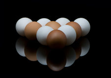 Pool eggs Stock Image