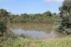 Pool en Flora, het Nationale Park van Ein Afek, Israël stock foto's