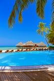 Pool en koffie op het strand van de Maldiven stock afbeelding