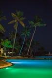 Pool en palmen royalty-vrije stock fotografie