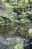 Pool at the foot of The Ravine. At Rivington Terraced Gardens, near Horwich, Lancashire, England Royalty Free Stock Photography