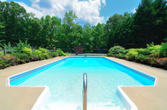 Pool in Forest Stock Photography