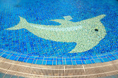 Pool  ground Royalty Free Stock Photo