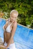Pool heraus Stockbild