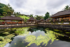 The pool of holy springs at Tirta Empul, Bali Stock Photo