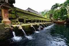 The pool of holy springs at Tirta Empul, Bali Stock Images
