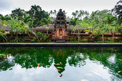 The pool of holy springs at Tirta Empul, Bali Royalty Free Stock Image