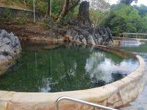 Pool Hot spring in coron palawan royalty free stock images
