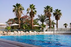 Pool in hotel. Of tropical country stock image