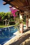 Pool im Garten Stockbild